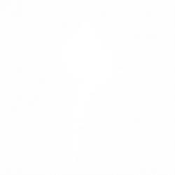 Морски охлюв