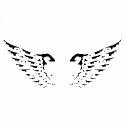 Орнамент криле