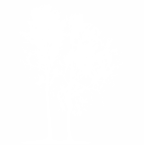 Дървeта