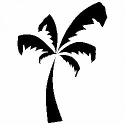 Палма