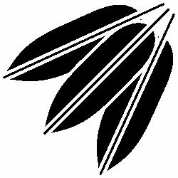 Листа