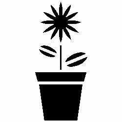 Цвете в саксия