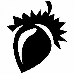 Жълъд
