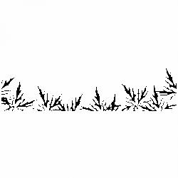 Листa