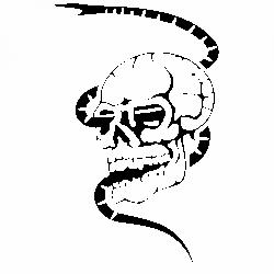 Череп и змия