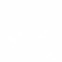 Мики Маус