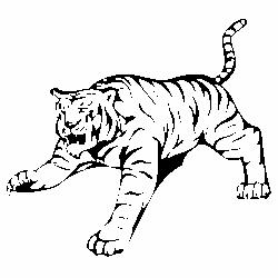 Тигър