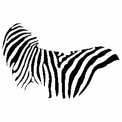 Шарка на зебра