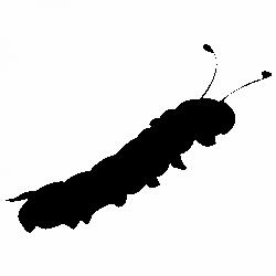 Гъсеница